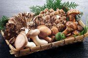 Ăn nấm có lợi cho sức khỏe?