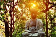 Lịch thuyết giảng Phật pháp ngày 26-5-2019